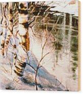 Birch By Stream Wood Print