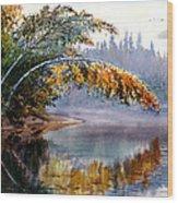 Birch Creek Beauty Wood Print