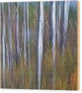 Birch Fall Abstract Wood Print