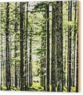 Birch Forest Fractal Wood Print