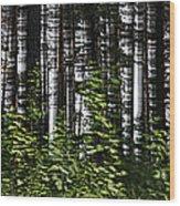 Birch Illusion Wood Print