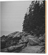 Birch Point Black And White Wood Print