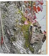 Birch Study Wood Print