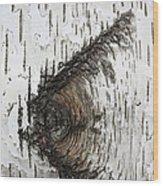 Birch Textures 30 Wood Print
