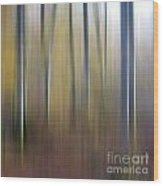 Birch Trees. Abstract. Blurred Wood Print