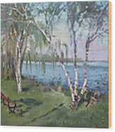 Birch Trees By The River Wood Print