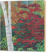 Birch Trees In Red Wood Print