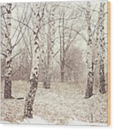 Birch Trees In The Snow. Winter Poems Wood Print