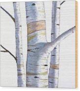 Birch Trees In Three Wood Print