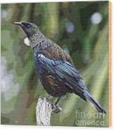 Bird 1 Wood Print