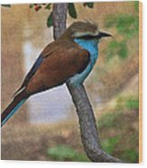 Bird 6 Wood Print
