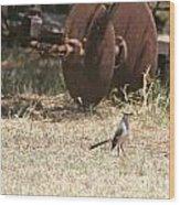 Bird Alert Wood Print