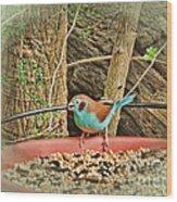 Bird And Feeder Wood Print