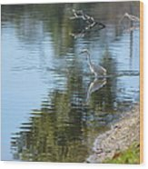 Bird And Pond Wood Print