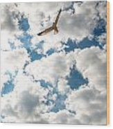 Bird And The Clouds Wood Print