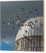 Bird - Birds Wood Print by Mike Savad