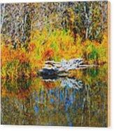 Bird Branch Reflection Wood Print
