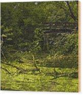 Bird By Bridge In Forest Merged Image Wood Print