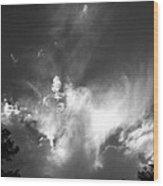 Bird Cloud Wood Print