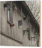 Bird Houses Wood Print