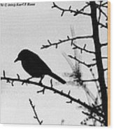 Bird In B And W Wood Print