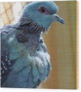 Bird In Blue Dress Wood Print