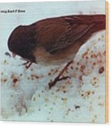 Bird In Snow 2 Wood Print