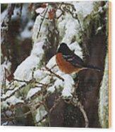 Bird In Snow Wood Print