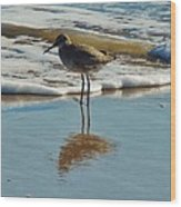Bird In Surf Reflecting 12/14 Wood Print