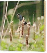 Bird In The Bull Rushes Wood Print