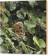 Bird In The Ivy Wood Print