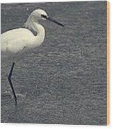 Bird In The Water Wood Print