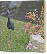 Bird In Yard Wood Print