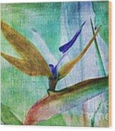 Bird Of Paradise Watercolor Wood Print