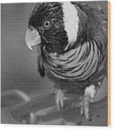 Bird On A Chain Wood Print