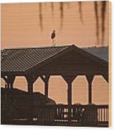 Bird On A Hot Tin Roof Wood Print