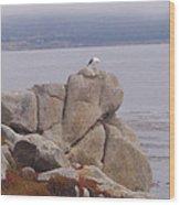 Bird On A Rock Wood Print