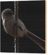 Bird On A Rope 2 Wood Print