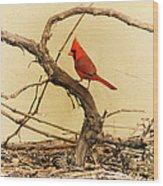 Bird On A Vine Wood Print