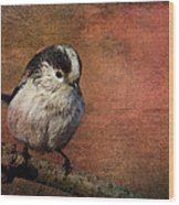 Bird On The Beam Wood Print
