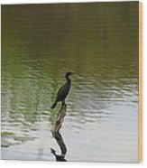 Bird On The Lake Wood Print