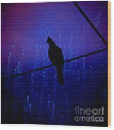 Bird On The Wire ... Wood Print