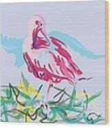 Bird Red Ibis Wood Print