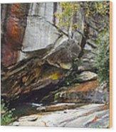 Bird Rock Waterfall Wood Print