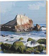Bird Sentry Rock At Dana Point Harbor Wood Print
