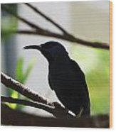 Bird Silhouette Wood Print