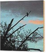 Bird Watching Sunrise Wood Print