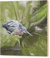 Bird Whirl Wood Print