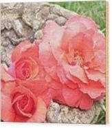 Birdbath Roses Wood Print