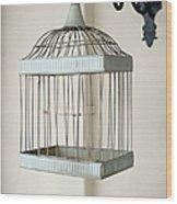 Birdcage Wood Print